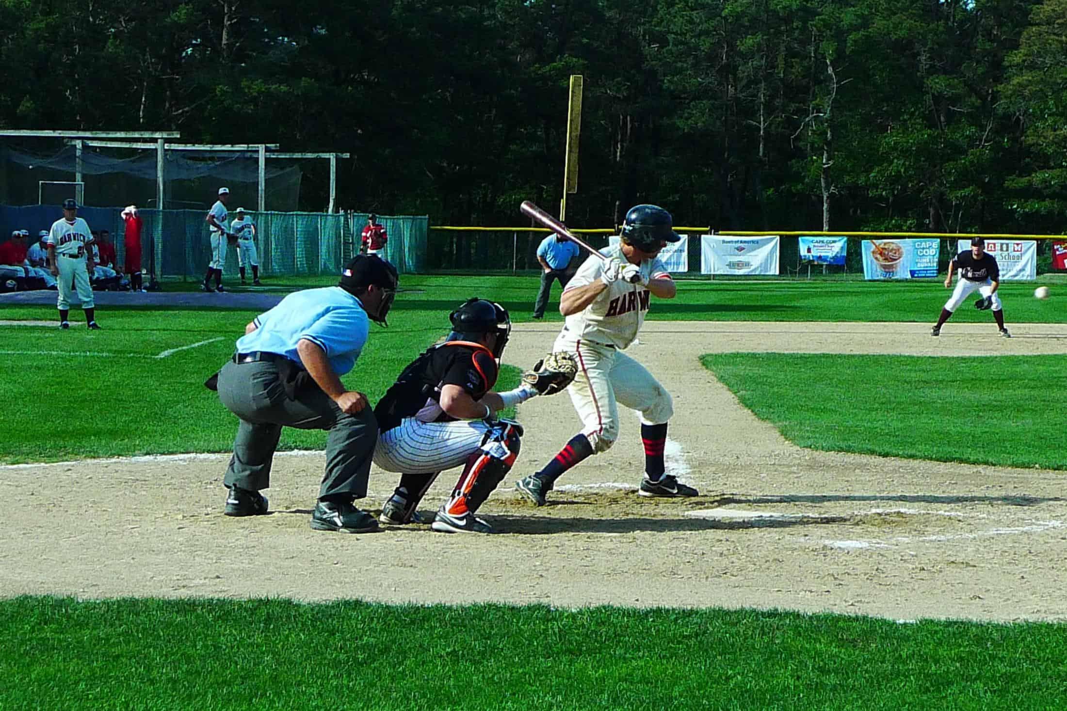 Cape Cod Summer Baseball The Platinum Pebble Boutique Inn