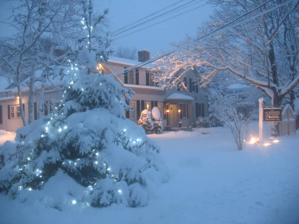 Cape Cod Inn, Snow