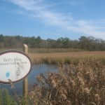 Cape Cod Trail