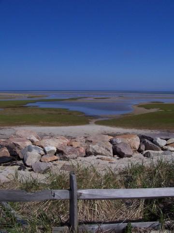 Cape Cod Tidal Flats