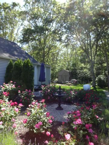 Cape Cod Garden