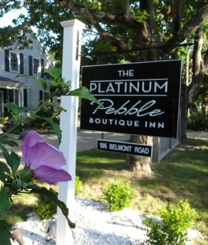 Platinum Pebble Sign