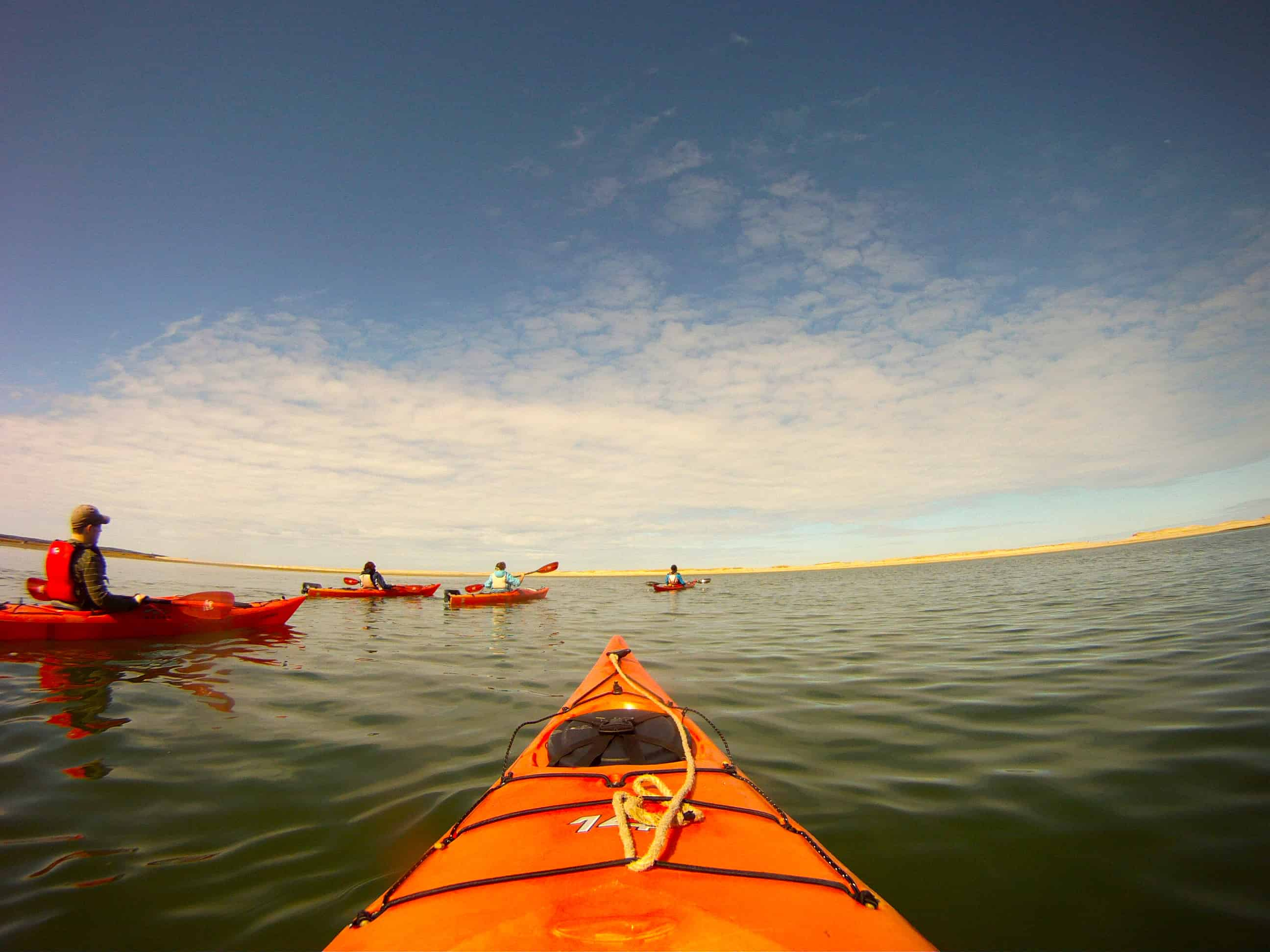 Cape cod vacation ideas kayaking the platinum pebble for Cape cod cabin