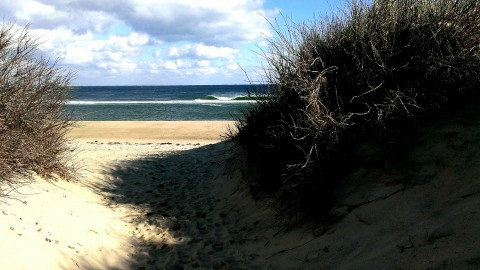 Cape Cod Vacation Ideas Day Trip to Provincetown