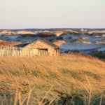 Things to do on Cape Cod