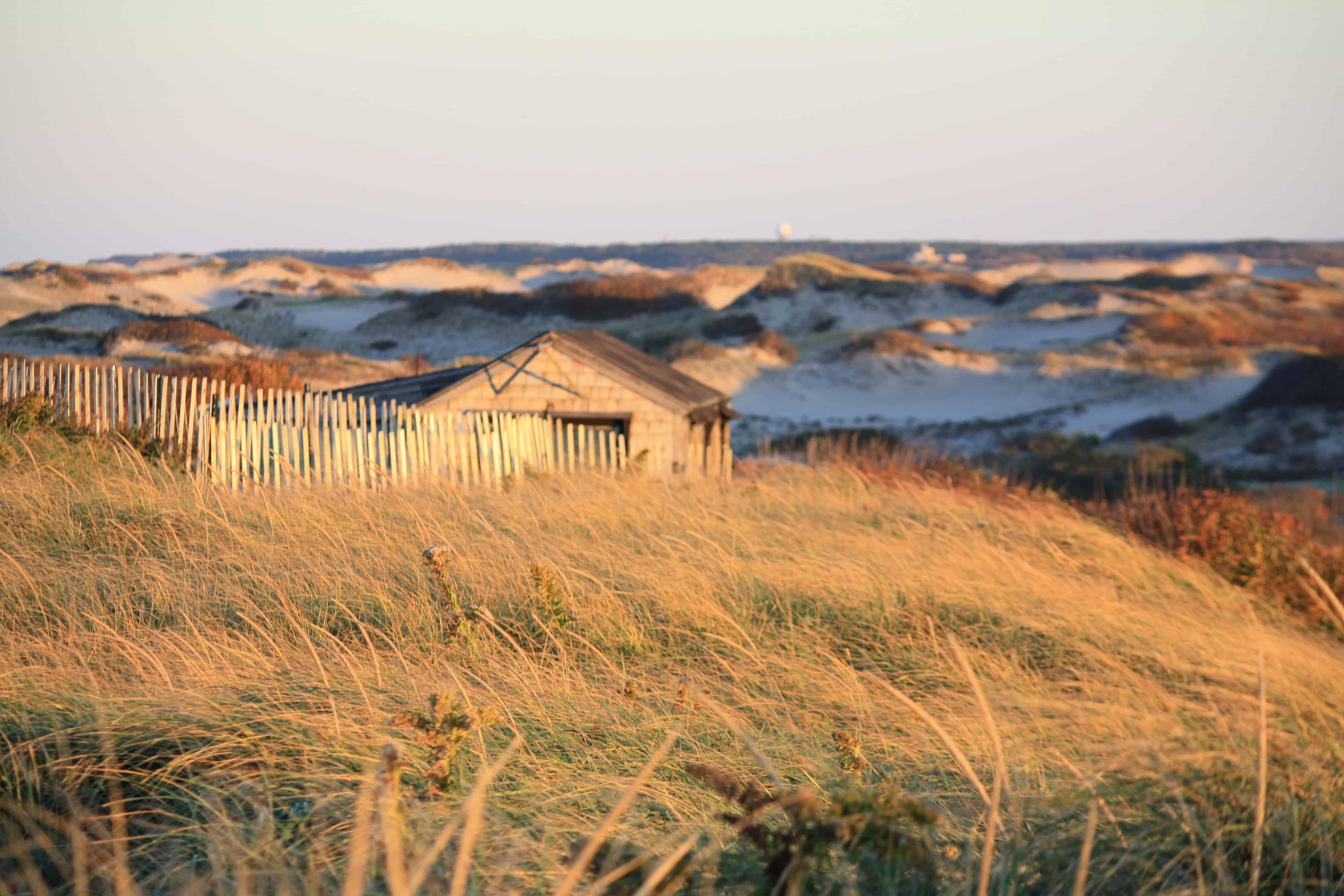 Delightful Dune Shacks Cape Cod Part - 4: Dune Shacks