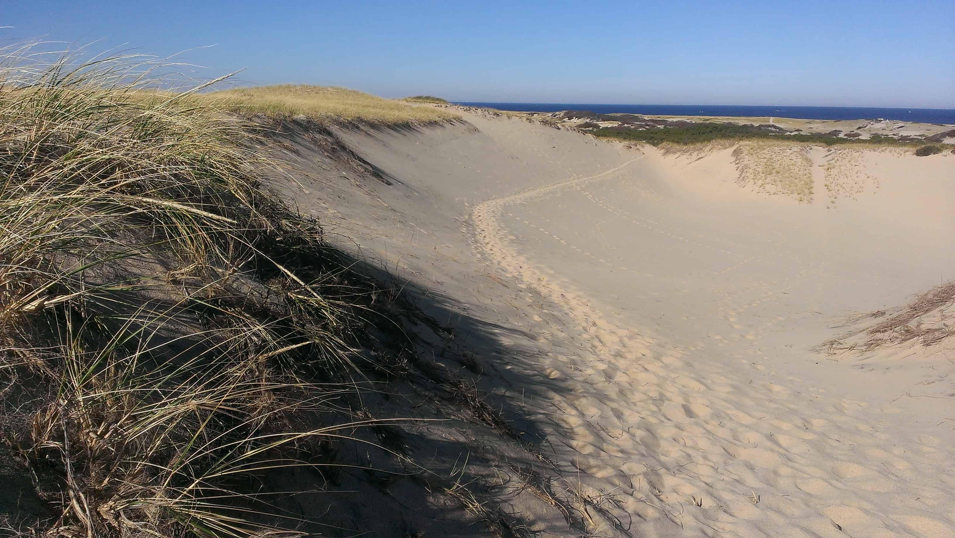 Dune Shacks Cape Cod Part - 24: Dune Shacks