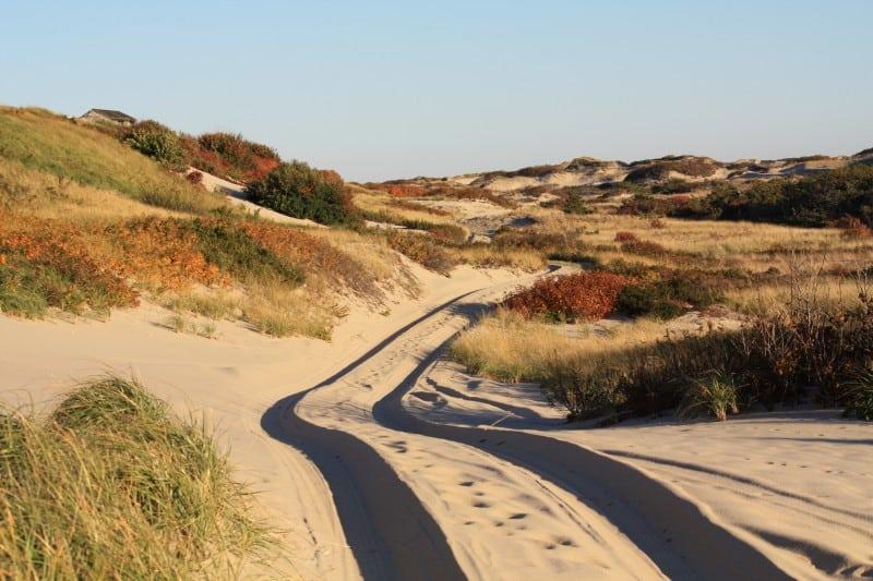 Dune Shacks