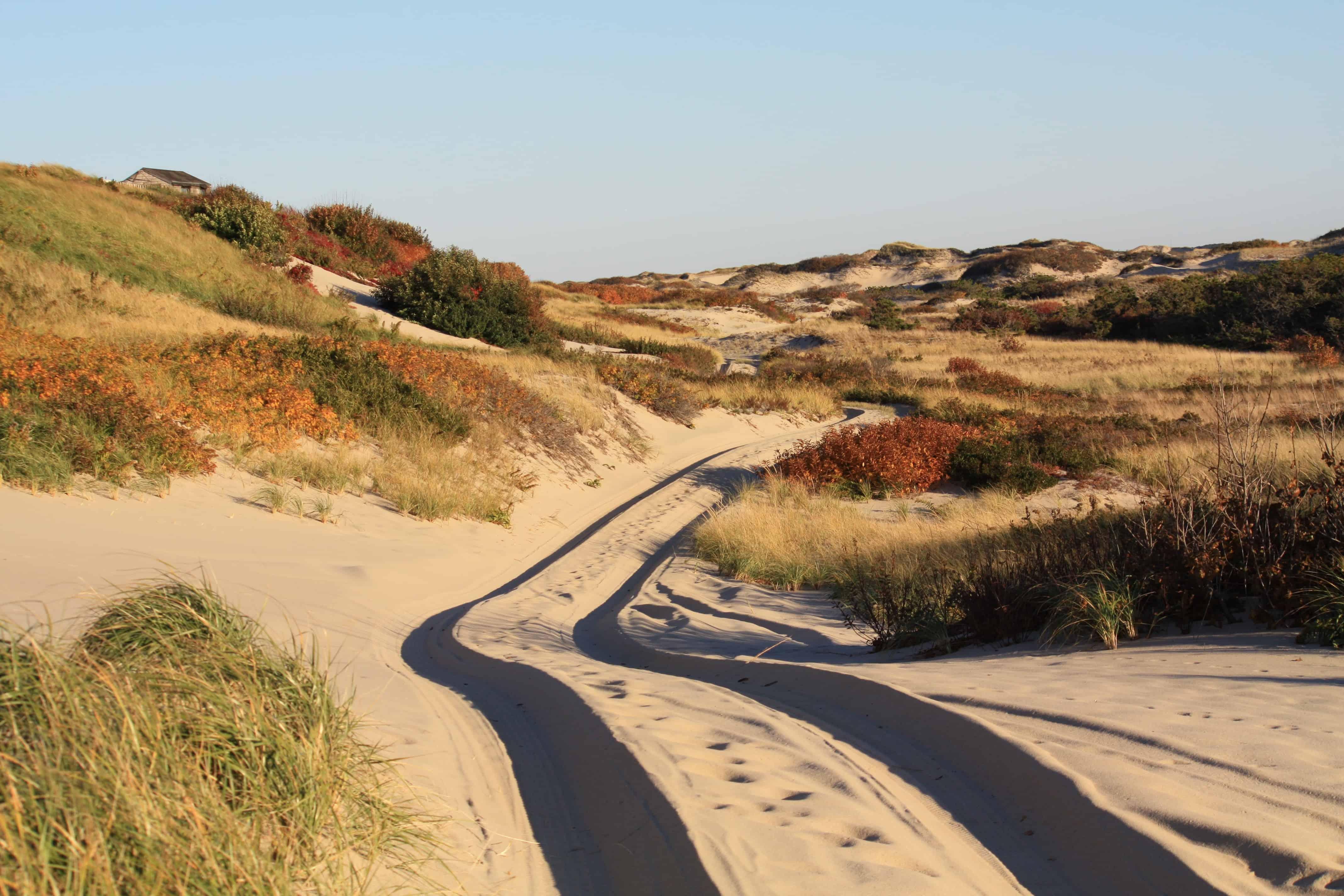 Dune Shacks Cape Cod Part - 18: Dune Shacks