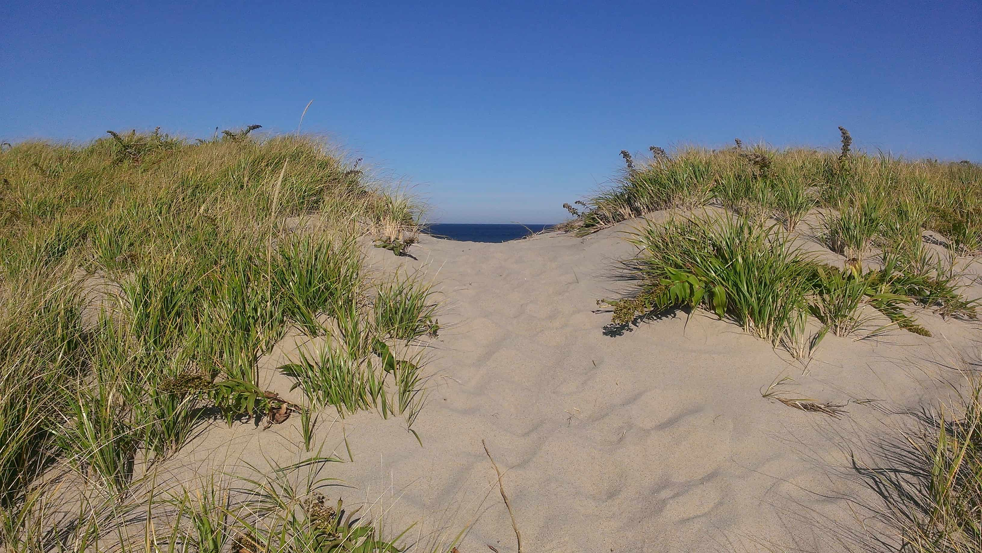 Beach House Cape Cod Ma