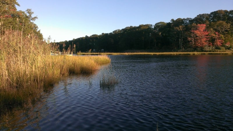Swimming holes on Cape Cod