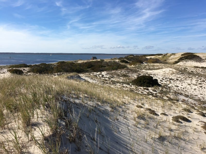 Cape Cod Epic Hikes
