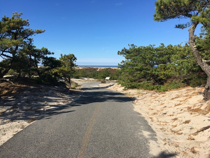 Cape Cod Bike Trails