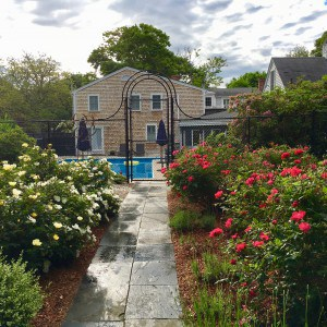 Cape Cod May Special